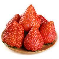 西安 南山鲜草莓   新鲜采摘  包邮到家